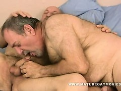 chubby-and-hairy-daddy-fuck-his-mature-friends-ass