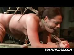 shibari-rope-bondage-and-spanking
